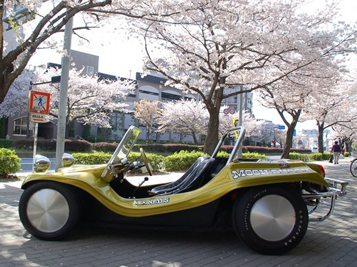 int116 MOON Buggy 06