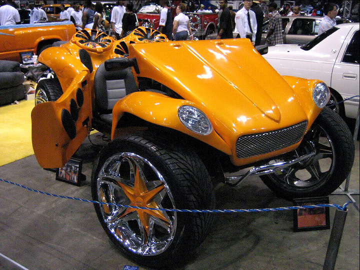int135 XTreme Buggy01